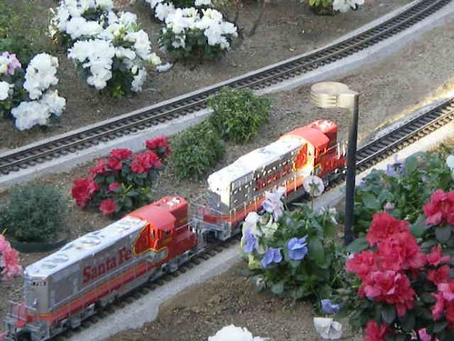 g scale trains