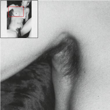 Hairy Parts 15