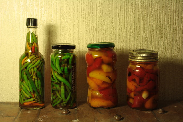 Pickled Peppers | Flickr - Photo Sharing!