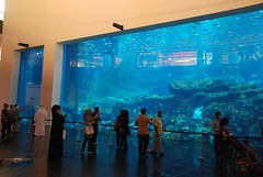 The Dubai Mall Aquarium - Dubai, United Arab Emirates