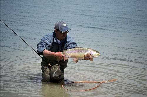 Colorado top rivers for Tarryall reservoir fishing