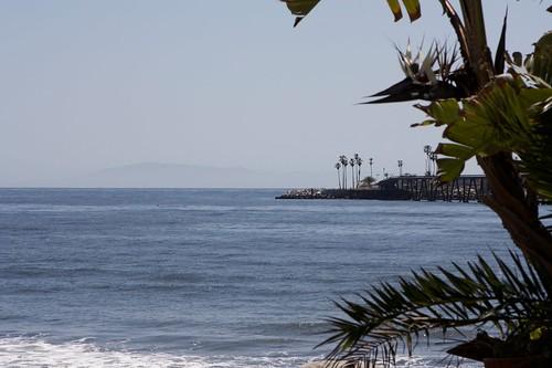 Xander Visits Cliff House Inn & Beach