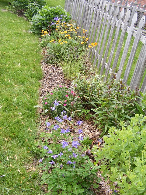 Flower bed along side fence explore ricklibrarian 39 s for Flower bed fencing