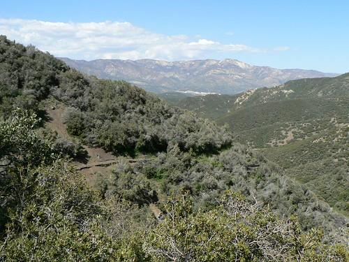 Howard Creek Trail No. 1