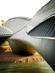 Zaha Hadid bridge. EXPO Zaragoza
