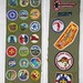 merit_badge_sash