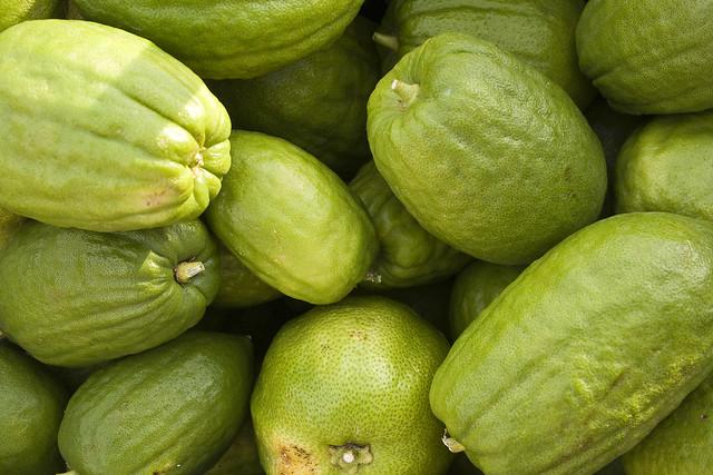 cedro, bergamotto, Calabria, agraria, produzione