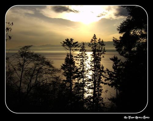 seascape nature geotagged whidbeyisland washingtonstate olympicmountains drivetosouthwhidbeybeaches