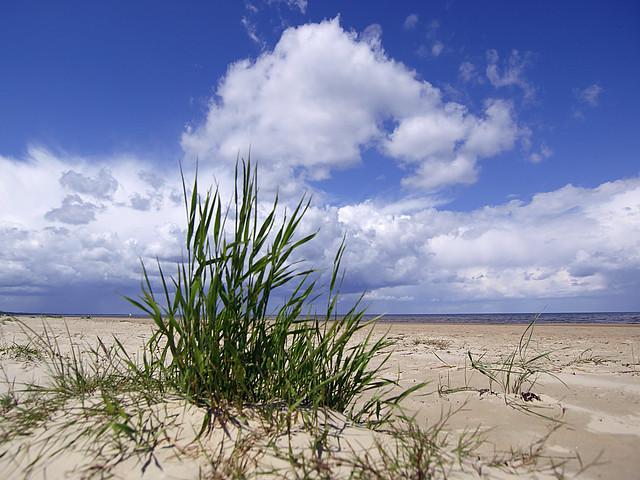 Beach near Jurmala by CC user dainismatisons on Flickr