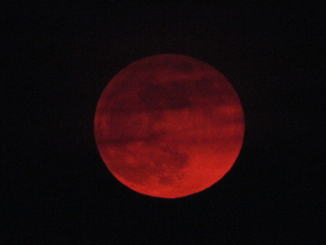 IMG_0160 Red Moon