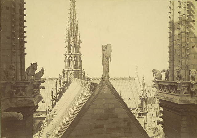 Notre Dame de Paris. View from Tower with Chimeras and Gargoyles