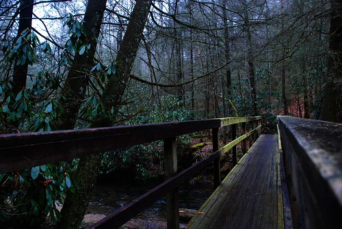 county bridge usa sc america us footbridge path south united southcarolina trail carolina states oconee darkforest viewfromabridge takenonabridge palmettostate takenfromabridge viewonabridge