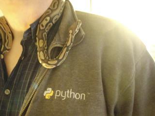 Python Branding