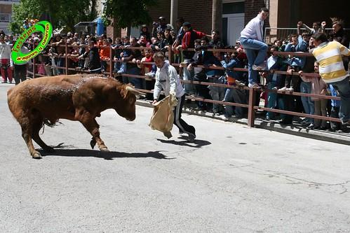 Casetas zaragoza 1 5 2009 ma ana ganaderia bego a arnillas - Tiempo en casetas zaragoza ...
