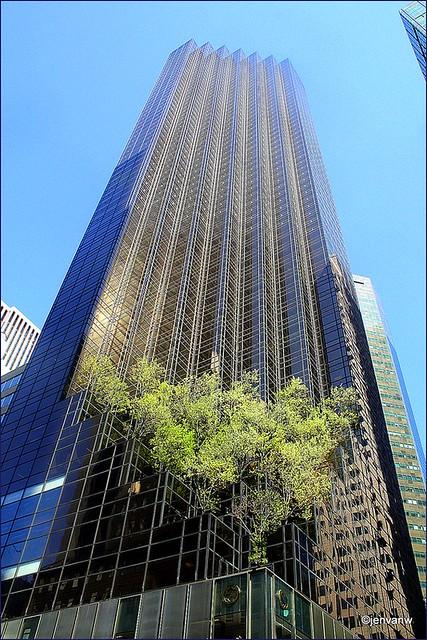 Donald Trump Tower Flickr Photo Sharing