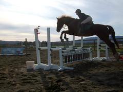 Horse triple, Triple bar