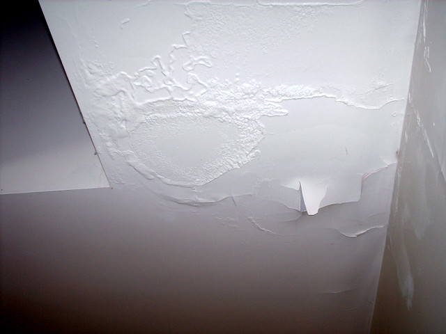 Mom Bathroom Paint Ceiling Flickr Photo Sharing