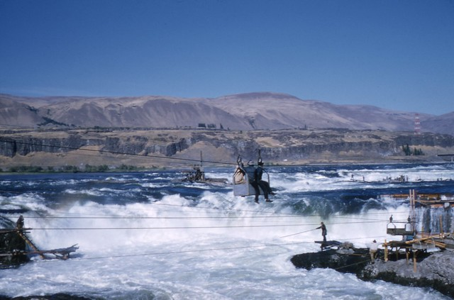Fishing at celilo falls on the columbia river for Fishing columbia river