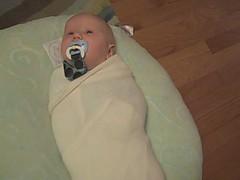 swaddled baby.