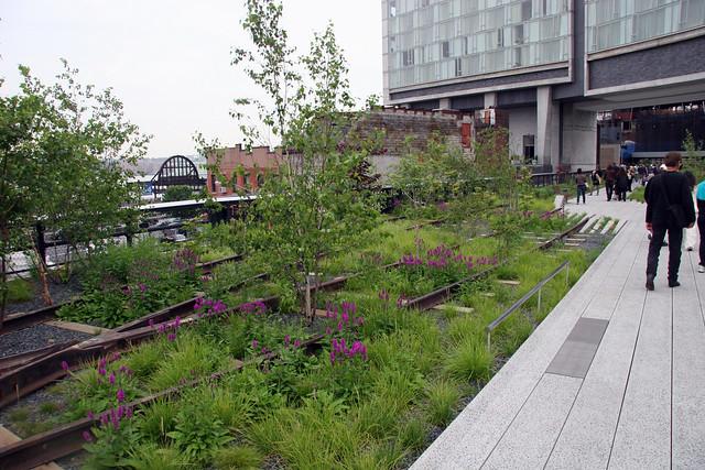 090610 High Line Park 017