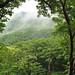 Small photo of Mt. Amagi