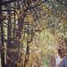 The Wishing Tree by Lissy Elle Laricchia