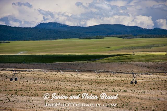 Idaho Potato Farms Submited Images