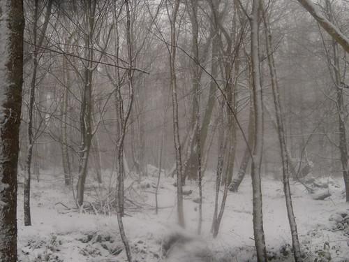 Kent or Siberia?