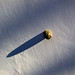Snail/nail by Adalberto Tiburzi