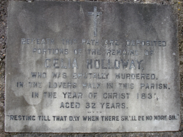 Photo of Celia Holloway grey plaque