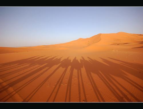 sahara sand bravo shadows desert legs ombre morocco camels deserto 10mm ergchebbi aplusphoto holidaysvacanzeurlaub infinestyle doarayourdesertgrazie