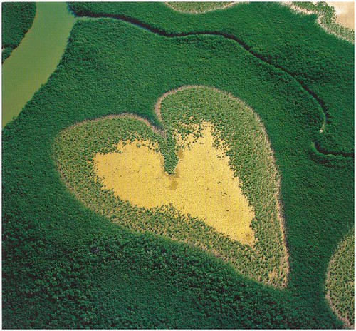 Heart in Voh, New Caledonia