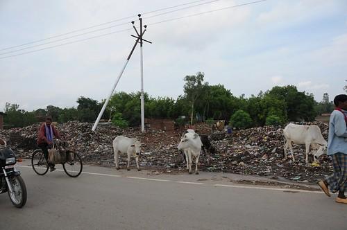 general waste solid uttarpradesh geo:dir=444 june2008 geo:lat=2513246 geo:lon=825798316666667 dhaurupur mirzapurcumvindhyachal