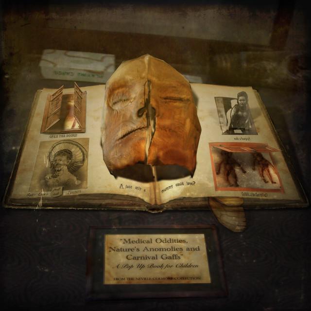 Human Oddities A Book Of Nature
