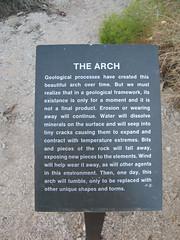 Joshua Tree National Park (The Arch)