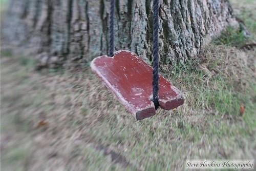 Old Swing - Tree Swing