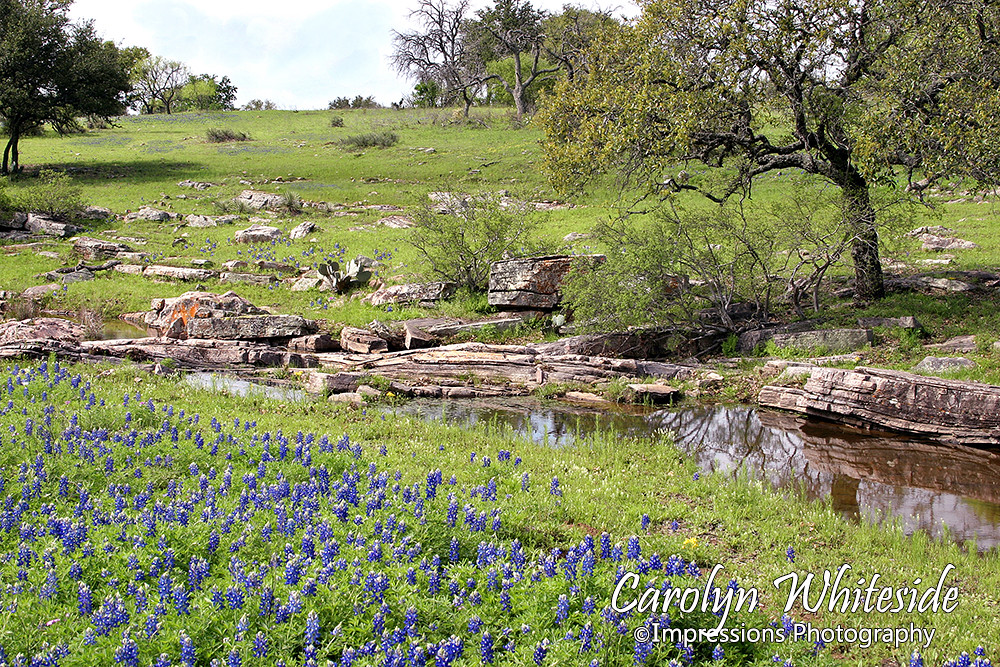 Texas Hill Country Landscape Photos Texas Hill Country