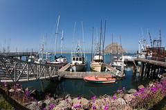 Harbor waterfront scene, docks in Morro Bay, CA