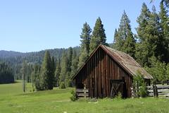 Yosemite 142