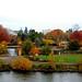 Small photo of Alton Baker Park