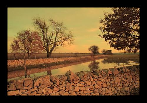 1001nights puglia apulia goldenglobe apulien barryadamson altamurgia corato aplusphoto pouille sanmagno flickrestrellas