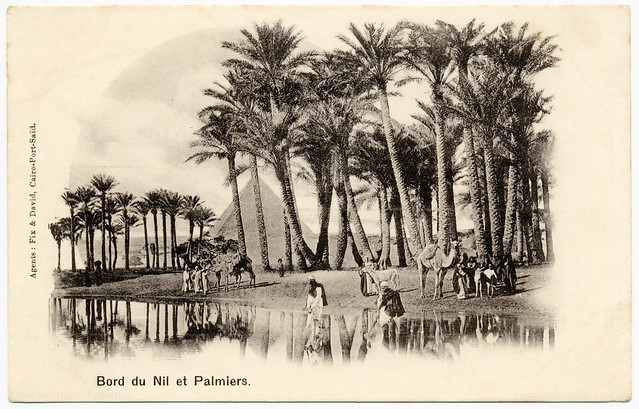 Dreamy Orient: Palm Trees at the Banks of the Nile (c.1902)