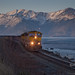 Turnagain Train