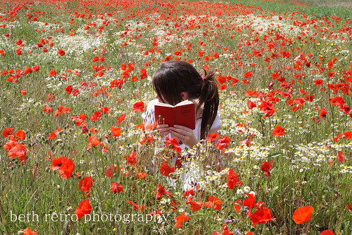 poppy field poetry II