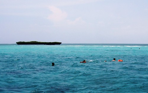 Snorkeling at Kisite Reef
