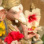 Ganesh and Flowers - Penang, Malaysia