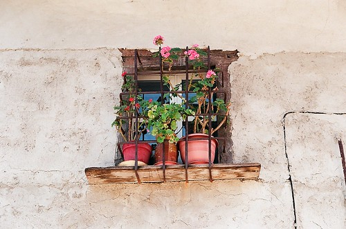a window by BLOGTRAVELLER