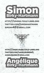Personal business cards - Summer 2009