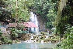 Kawasan Falls in Badian Cebu