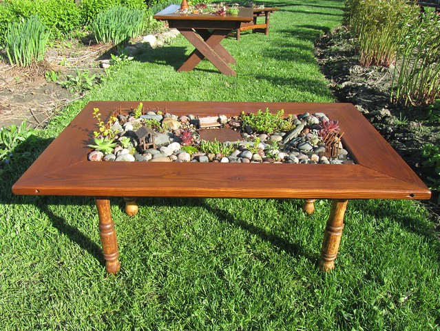 Terrarium Coffee Table Side View 2 Flickr Photo Sharing